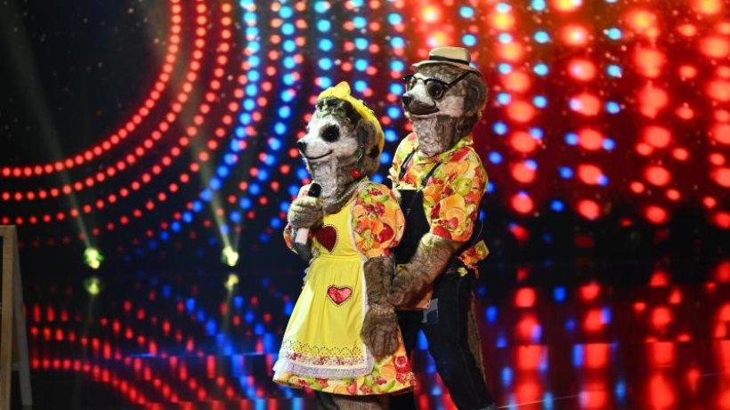 """Überraschung bei """"Masked Singer"""": Diesmal tritt ein Duo an"""